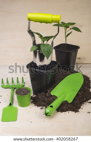potted plants and garden tools on a wooden background