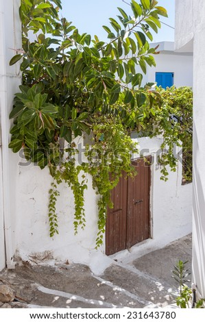 Potted Plants in the Street of Hora Sfakion on Crete. It is a tourist spot on the south coast of Crete.  - stock photo