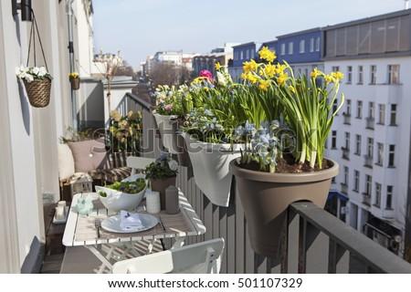 Potted spring flowers on sunny balcony stock photo edit now potted spring flowers on a sunny balcony mightylinksfo
