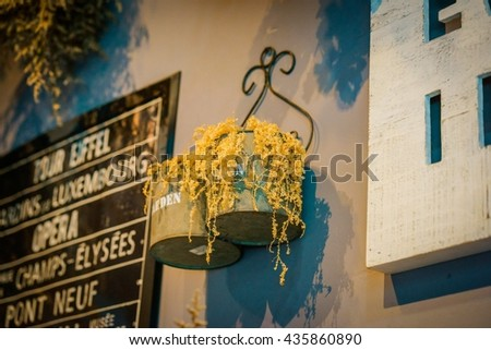 Potted tree for your shop and restaurant. - stock photo