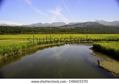 Potters marsh Alaska - stock photo