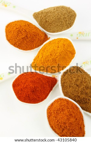 Pound spicy ingredients arranged on the spoons - stock photo