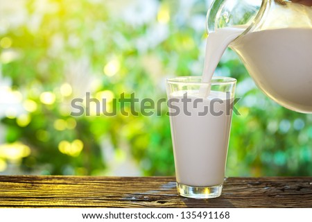 Pouring milk in the glass on the background of nature. - stock photo
