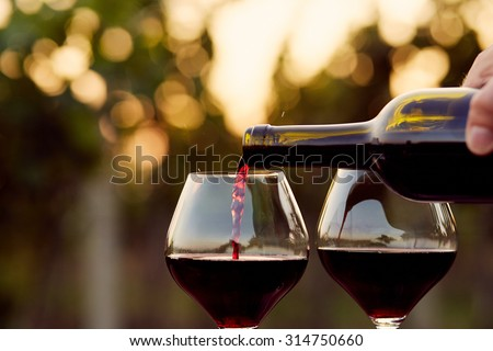 Pouring red wine into glasses in the vineyard, toned - stock photo