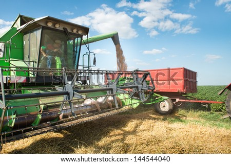 Pouring wheat into tractor trailer - stock photo