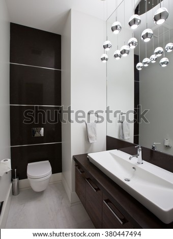 Powder room in new luxury house