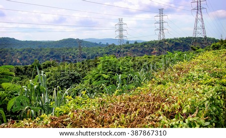 Power lines on a background of green grass./Power lines. /Ghana. West Africa. - stock photo