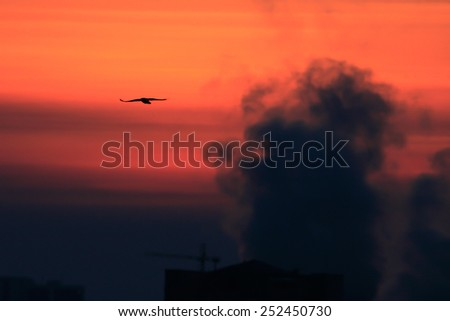 Power Plant emissions seen above residential blocks from a city during sunset. Environmental pollution. Factory pipe polluting air. - stock photo