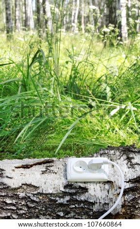 power receptacle and switchplug on a tree - stock photo
