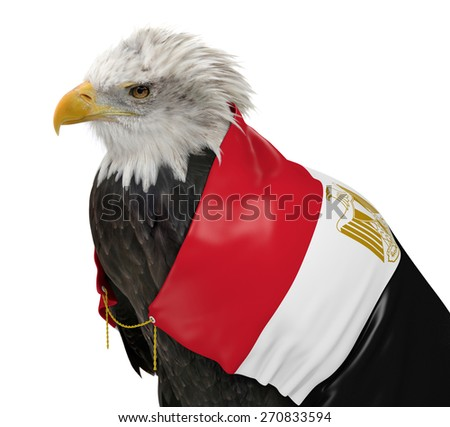 Powerful eagle wearing the country flag of Egypt - stock photo