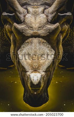 powerful head of a rhinoceros, leadership - stock photo