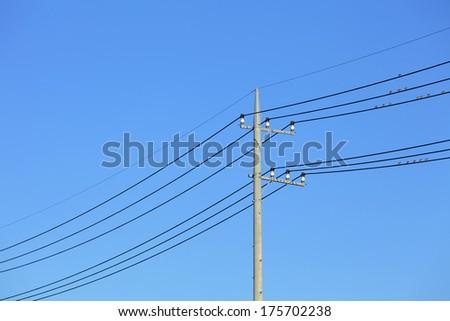 Powerline - stock photo