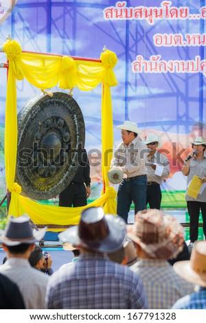 "PRACHUAPKHIRIKHAN, THAILAND - DECEMBER 14 : Fair of competition the animals ""Livestock Show 2013"" on December 14, 2013 in Pranburi, Prachuapkhirikhan, Thailand - stock photo"