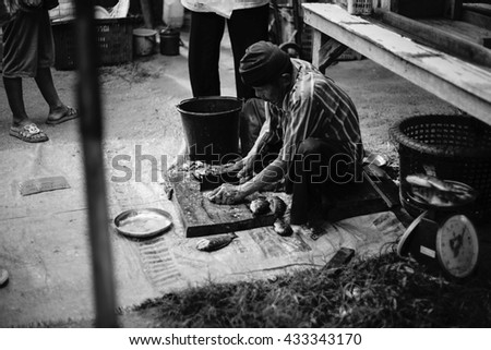 Prachuapkhirikhan,Thailand -June 05, 2016: Unidentified old man gutting fish ready to sell at thai traditional market Prachuapkhirikhan Province,Thailand / High contrast black and white picture style