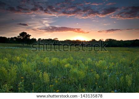 Prairie Dusk A dramatic sunset sky over Schulenberg Prairie at The Morton Arboretum, Lisle, Illinois. - stock photo