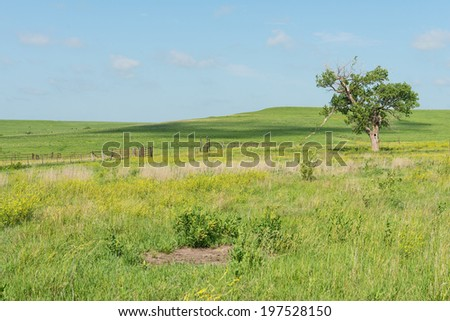Prairie farm on a sunny day, Strong City, Kansas - stock photo