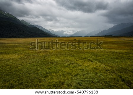 Prairie in Alaska on the way to Seward from Anchorage on an overcast Summer day.