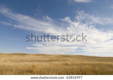 Prairie landscape - stock photo