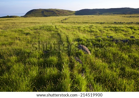 Prairie & stones - stock photo
