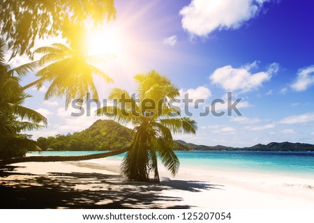 Praslin island, Seychelles. The island of dreams for a rest and relaxation. White coral beach sand. Sunset. - stock photo