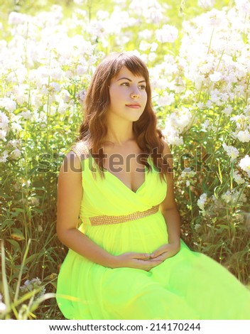 Pregnant lovely woman in wildflowers in summer sunny day - stock photo