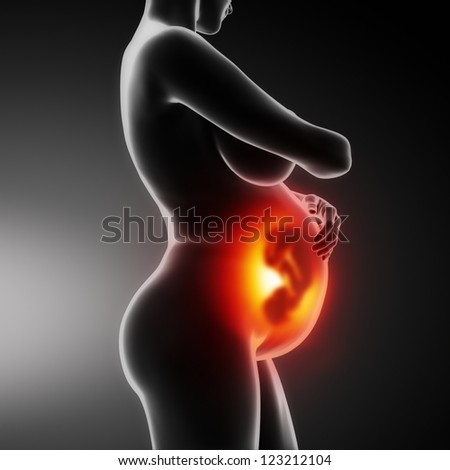Pregnant woman lateral view - stock photo