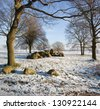 Prehistoric tomb (D16) on the ash of Balloo. Netherlands - stock photo