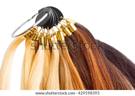 Hair extensions stock images royalty free images vectors premium hair extension palette with color samples from blonde to black isolated on white pmusecretfo Gallery
