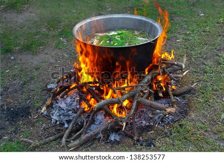 prepare tasty food over a campfire