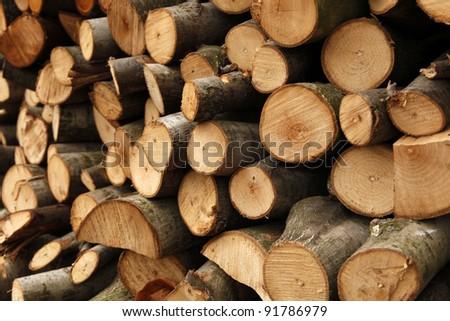 Prepared firewood - stock photo
