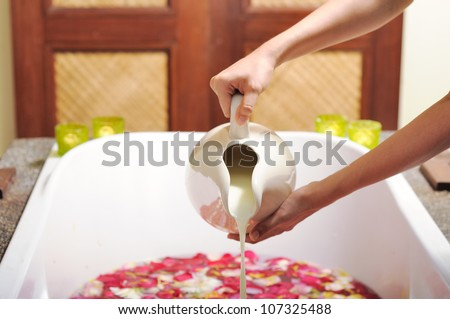 Preparing milk bath by pouring milk inside a bath tub full of fresh roses, part of spa treatment. - stock photo