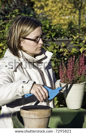 Preparing the for the winter - stock photo