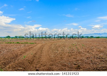 Preparing the land for crop cultivation.