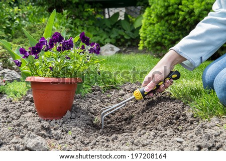 Preparing to plant flowers in the garden - stock photo