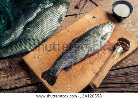 Preparing trout for dinner in the countryside - stock photo