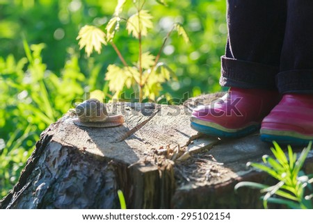 Preschooler feet in red gum boots are standing on tree stump near creeping edible snail - stock photo