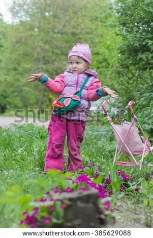 Preschooler girl with pink toy stroller is making helpless shrug gesture near purple primula flowerbed - stock photo