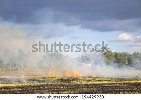 Prescribed prairie burn on the Great Plains - stock photo