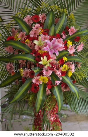 Present fresh flower - stock photo