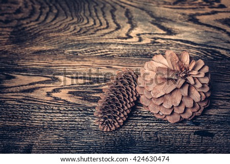 present from forest. two big fir cones - stock photo