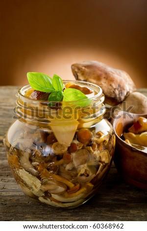 preserved edible mushroom - stock photo