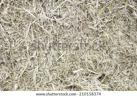 Pressed straw in livestock, agriculture and gathering - stock photo