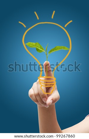 pressing light bulb,young plant in a light bulb - stock photo