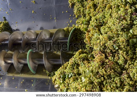 pressure grapes at the winery - stock photo