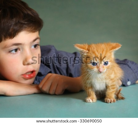 preteen handsome boy with red kitten - stock photo