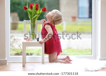 Pretty blonde toddler girl smelling beautiful tulips standing on the tiles floor table next to a big window with street view - stock photo