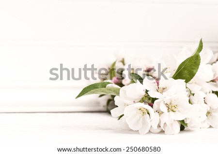 Pretty Crab Apple Blossoms in Lower corner on Rustic White Board Slats Background with empty blank room or space for text, copy, your words.  Horizontal frame, high key, vintage bleach bypass  - stock photo