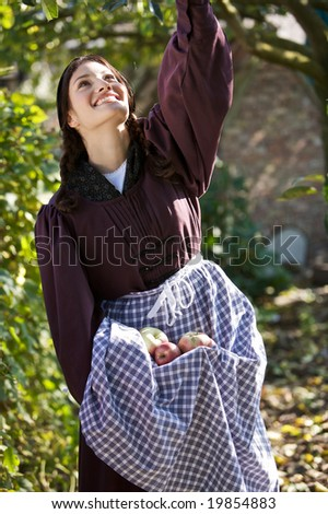 Pretty farmgirl outdoors picking the apples from the appletree and collecting them in her skirt - stock photo