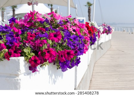 Pretty floral arrangement on the background of summer recreation area on beach, sunny day in backlit. Selective focus, as a background for any advertising, compositions for production of advertising.