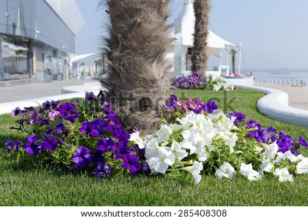 Pretty floral arrangement on the background of summer recreation area on beach, sunny day in backlit. Selective focus, as a background for any advertising, compositions for production of advertising. - stock photo